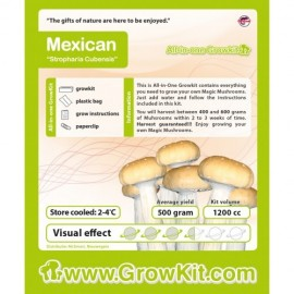Grow Kit Mexican
