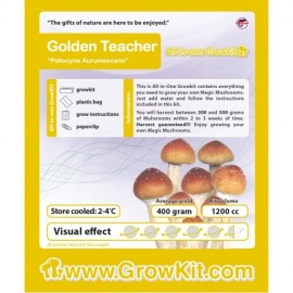 Grow Kit Golden Teacher